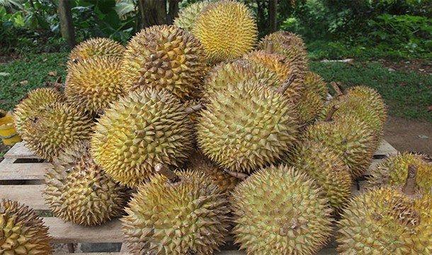 TOP-25: Cele mai ciudate fructe din lume