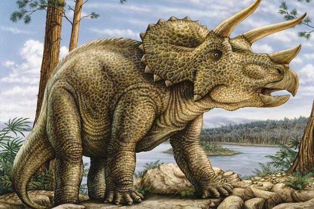TOP-10: Curiozități despre dinozauri